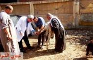 وكيل وزارة الطب البيطري بالشرقية : نسعي للحفاظ على الثروة الحيوانية وزيادة إنتاجيتها