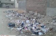 القمامة ومياه المجارى والكلاب الضالة يهددان مواطنى شارع عمر بن عبدالعزيز بمدينة أبوحماد