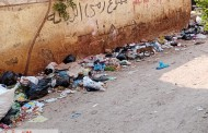 أكوام القمامة تهدد صحة مواطنى شارع هارون الرشيد فى أبوحماد البلد