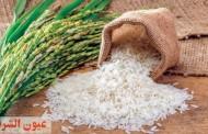 كيفية التخلص من سوسة الأرز