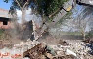 تنفيذ ٧ قرارات إزالة التعديات مخالفة على أراضي أملاك الدولة علي مساحة 100متر بنطاق مركز ديرب نجم