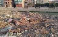 القمامة تحاصر بحر مويس بههيا.. والأهالى عن المسئولين: