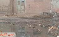 كارثة إنسانية..قرية القراموص بأبوكبير تعوم على مياه الصرف الصحي