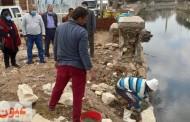ههيا تتجمل...تحجير كورنيش البحر ورفع القمامة وزراعة زهور وورود بمدخل المدينة