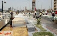 حي ثان الزقازيق يكثف أعمال النظافة والتجميل بالممشي السياحي وفي محيط المساجد والمستشفيات