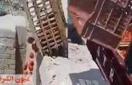 «الداخلية» تكشف تفاصيل فيديو إلقاء «حمولة طماطم» في مصرف بالشرقية