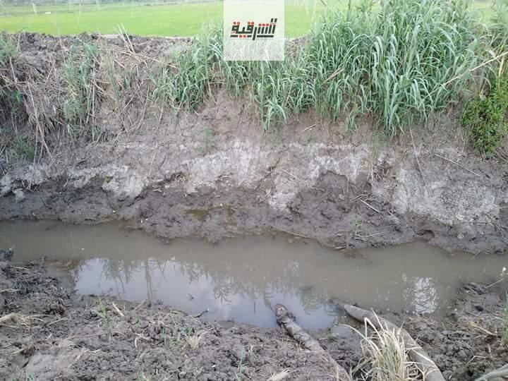 الجفاف يهدد المحاصيل الزراعية بقرية المجفف بديرب نجم بالموت